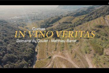 In vino Veritas #2
